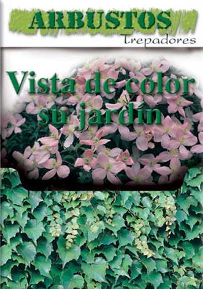 Caja de arbustos trepadores de Clemente Viven