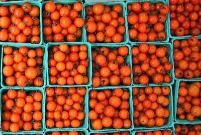 Cajas de tomates