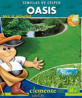 Césped Oasis