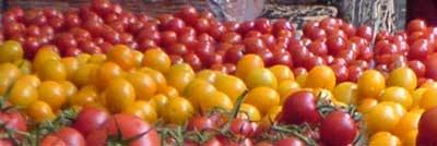 Tomates amarillos y rojos en el punto de venta
