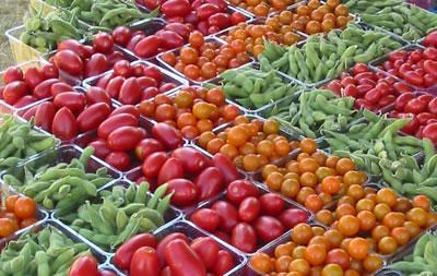 Exposición de tomates