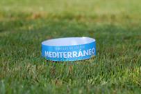 Césped mediterraneo
