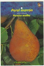 Etiqueta de frutal