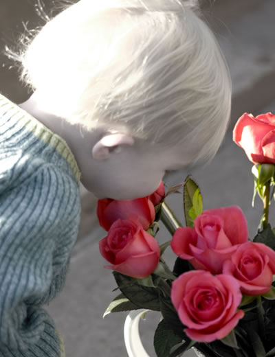 Ni�±o con rosas