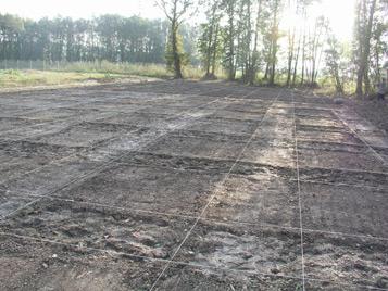 Terreno sembrado y rulado
